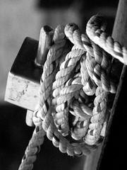 Tied Up  2 (Cornishcarolin. Thank you everyone xxxx) Tags: white black mono cornwall rope tied knots thelizardpeninsula