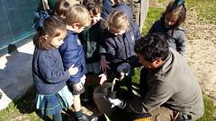 huerto-niños-colegio-madrid (5)
