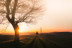 Counting Down (Adam_Marshall) Tags: trees winter sunset orange adam nature canon landscape outdoors countryside little sigma marshall f28 cambridgeshire goldenhour adammarshall 1750mm gidding stereocolours canoneos70d