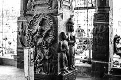 Parthasarathy Temple Pillar Incarnations (Vijay Ram) Tags: temple temples pillars chennai tamilnadu southindian mandapam parthasarathy triplicane