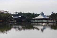 BM7Q4280.jpg (Idiot frog) Tags: park lake building tree water leaf outdoor bade lakeside taoyuan ecosystem