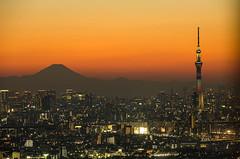 We're the highest in Japan! (703) Tags: sunset japan night tokyo twilight cityscape nightscape dusk mountfuji chiba  fujisan nightscene nightview    mtfuji  ichikawa   skytree    tokyoskytree  pentaxk5 ilinktown da18135mm   lovelychokolat