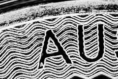 2016 Australian Kangaroo 1oz Coin (JokerMan45678) Tags: ag 999 silver kangaroo australia 1oz coin mpe65 canon macro closeup security pattern lines struck mint perth australian 2016 5dmarkiii yongnuo ringflash micro engrave stack stacking ounce 999fs troy round