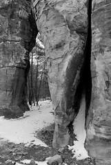 DSC_0031 (Fluff Tater) Tags: blackandwhite monochrome wisconsin glacial glaciallake millbluffstatepark raggedrocks 4march2016