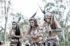 EFF2016_by_spygel_0093 (spygel) Tags: festival bush performance psytrance prettygirl dubstep doof earthfrequencyfestival aussiebushdoof