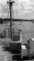 Penryn, Cornwall (Just Nice Photos) Tags: photography seaside cornwall penryn justnicephotos maryalicepollard