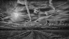 Road to Rudge ... April (HHH Honey) Tags: road sunset bw landscape blackwhite spring april wiltshire hdr sigma1735mmlens theroadtorudge googlenikcollection 12monthsofthesameimage sonya7rii