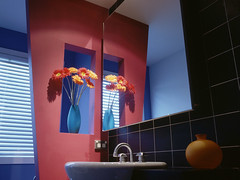home (aac.plumbingmasters) Tags: city houses usa home rooms bathrooms florida visualarts cities melbourne northamerica thesouth walls domesticscenes interiordecoration interiordesign sinks vases containers dwellings deepsouth settlements cutflowers designarts detachedhouse barriersandclosures brevardcounty