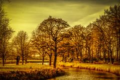 ***** (KJ Photographie) Tags: trees winter sky brown tree green grass forest river germany landscape deutschland nikon europa fineart wiese kanal grn landschaft wald ems bume baum flus blumenundpflanzen listrup