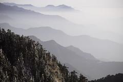 -23 (billlushana1) Tags: sunset mountain snow rock landscape minolta outdoor sony taiwan  peaks  taroko hualien  tarokonationalpark  superwide hehuanshan minoltamd  mountain 14 100peaksoftaiwan minoltamc135mmf28 taiwantop100peaks sonya7r