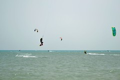 27_04_2016 (playkite) Tags: kite egypt kiteboarding april elgouna 2016