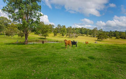 296 Youngs Road, Wingham NSW