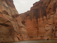 hidden-canyon-kayak-lake-powell-page-arizona-southwest-DSCN4950 (lakepowellhiddencanyonkayak) Tags: arizona southwest utah kayak kayaking page coloradoriver paddling nationalmonument lakepowell slotcanyon glencanyon watersport glencanyonnationalrecreationarea recreationarea guidedtour hiddencanyon utahhiking arizonahiking kayakingtour halfdaytrip craiglittle lakepowellkayak lonerockcanyon kayakinglakepowell hiddencanyonkayak seakayakingtour seakayakinglakepowell arizonakayaking utahkayaking