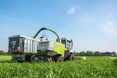 Whole crop silage with Claas machines (Daniel H. M.) Tags: tractor farming landwirtschaft pflanzen whole machinery crop jaguar disc silage direct niederrhein ganz claas axion biogas fliegl agrarfoto