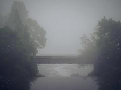 Foggy Bridge (trm42) Tags: bridge trees summer fog night suomi finland helsinki midsummer calm juhannus kes y vanhankaupunginkoski sumu vanhakaupunki