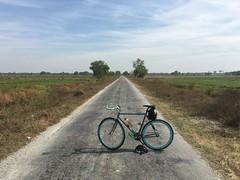 Myanmar, Ayeyarwady Region, Pathein District, Kyaunggon Township, Ah Su Kyi Village Tract (Die Welt, wie ich sie vorfand) Tags: bicycle cycling burma delta myanmar steamroller surly irrawaddy pathein ayeyarwady ayeyarwadyregion patheindistrict kyaunggon ahsukyi kyaunggontownship
