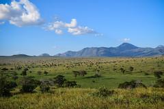 Safari, Landscape (robseye76) Tags: africa park holiday game landscape kenya salt lick lodge safari national vacations kenia tsavo wakacje saltlick afryka sarova