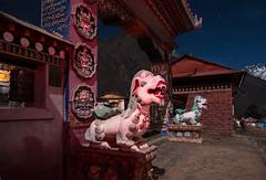 Tengboche (Andrei Doubrovski) Tags: nepal night trekking stars monastery choling ebc thyangboche gompa tyangboche dawa tengboche