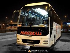Man Lions Coach Euro 6 (Truck Bus Spotter - www.magazinulasim.com) Tags: bus busse outdoor fortuna otobs vehiclecar mantrkiye euro6 magazinulamcom magazinulam manotobs manlionscoachmanfortuna