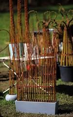 2016_04_10_st_jean_de_beauregar443 (Xavier_Claise) Tags: saint jean bokeh jardin fte horticulture dcoration ouverture plantes 135mm beauregard artisanat 2016 135mmf2 5dmarkiii