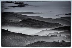 ....a zonzo per colline (Luca-Anconetani) Tags: sky bw italy panorama cloud nature monochrome fog landscapes nikon italia valle natura bn hills cielo marche colline d610 lucaanconetani