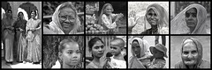 Inde du Nord 2007 - Portraits N & B (philippebeenne) Tags: bw india blackwhite faces nb rajasthan inde portrais retreats polyptyque noieblanc