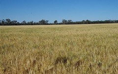 8418 Come By Chance Road, Pilliga NSW