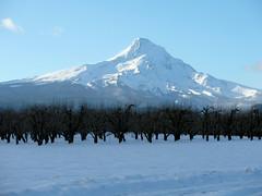 Mount Hood - Apke (OregonDOT) Tags: oregon scenic mounthood scenicoregon oregondot