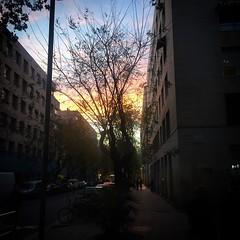 Un trocito de #atardecer #cielo #sky #anochecer #crepsculo #sunshine #sunset #sunrise  #bcn #barcelona #raval (Carolina_BCN) Tags: barcelona sunset sky sunshine sunrise atardecer bcn cielo anochecer raval crepsculo