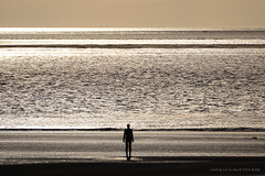 Looking out to sea (Chris Brady 737) Tags: antony gormley anotherplace