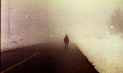 Into nothingness II (Victoria Yarlikova) Tags: road mist snow film analog 35mm lomo lomography moody traditional small grain atmosphere scan mount format lonely konica zenit analogue process snowfall expired etna helios pellicola