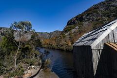 Crater Lake, Tasmania (Steven Penton) Tags: park mountain lake stclair australia national crater tasmania cradle fagus