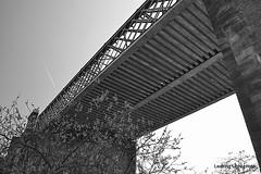 Irlam bridge (leaking_light) Tags: northbank manchestershipcanal irlam nikond3100