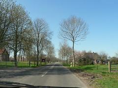 on the rural roads again (achatphoenix) Tags: road rural roadtrip backstreet april ostfriesland backroad printemps springtime ontour rheiderland