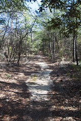 Eglin Reservation, Florida (fisherbray) Tags: usa nikon unitedstates florida hiking military timberlake hike trail airforce usaf range reservation afb eglin okaloosacounty d5000 fisherbray