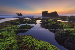 Did you spot the fisherman? (Pandu Adnyana Photography Tour) Tags: sunset bali rock indonesia moss baliphotography balilandscape mengeningbeach baliphotographytour