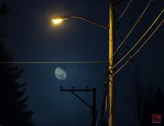 Moon & Light (Mitymous) Tags: longexposure moon mist fog night moonlight tullylake spring2016