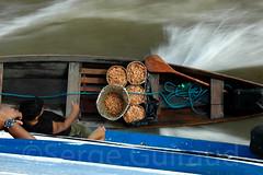 Fleuve Amazone (guiraud_serge) Tags: amazonie amazone caboclo sergeguiraud jabiruprod rioamazone cabocle