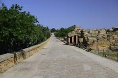 2016-04-17_16-13-30-Nikon D800 (Bernhard Kvaal) Tags: italy valley temples sicily sicilia agrigento