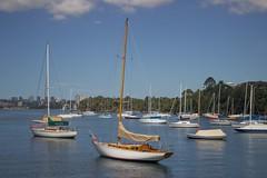 Mosman Bay (D.R.M.S.) Tags: sydney nsw sydneyharbour mosmanbay