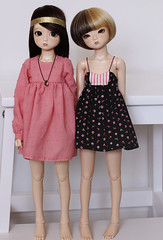 Tigerlou & Nanok. (icantdance) Tags: pink roses dress twiggy elfdoll nanok tigerlou icantdance
