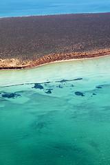 Shark Bay - 5380