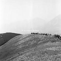 Lagonegro (PZ), 4 e 5 agosto 1973, pellegrinaggio sul monte Sirino per la festa della Madonna della Neve. (Fiore S. Barbato) Tags: italy madonna basilicata potenza neve monte festa feste lucania lagonegro pellegrinaggi pellegrinaggio massiccio sirino