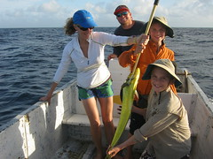 Fun fishing with Warren (Jeff Goddard 32) Tags: fishing belize dorado gloversatoll oceanfishing