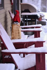 Winter Patio... (Bubash) Tags: winter snow home wisconsin yard chairs cardinal front patio blizzard adirondack