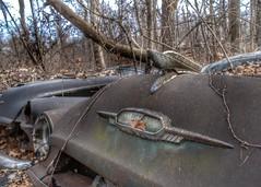 DSC08585.ARW-02 (juice95m3) Tags: abandoned rust vintagecar automobile junkyard oldcars classiccars