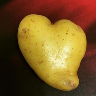 My vegetable love.