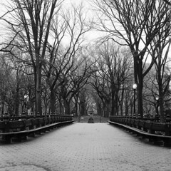 Many Come, Few Stay (AnaFas) Tags: nyc newyork 6x6 film mediumformat square centralpark manhattan delta ishootfilm ilford iheartny blackandwhitefilm filmisnotdead