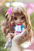 :3! (-Sebastian Vargas -コスミカラー-) Tags: chile japan hair this is doll factory tan blythe takara morena hasbro muñeca gyaru cosmicolor