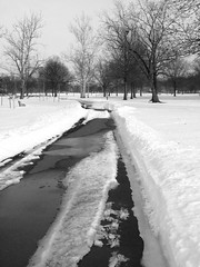 Partially plowed (Dendroica cerulea) Tags: road winter blackandwhite bw snow newjersey nj highlandpark middlesexcounty donaldsonpark